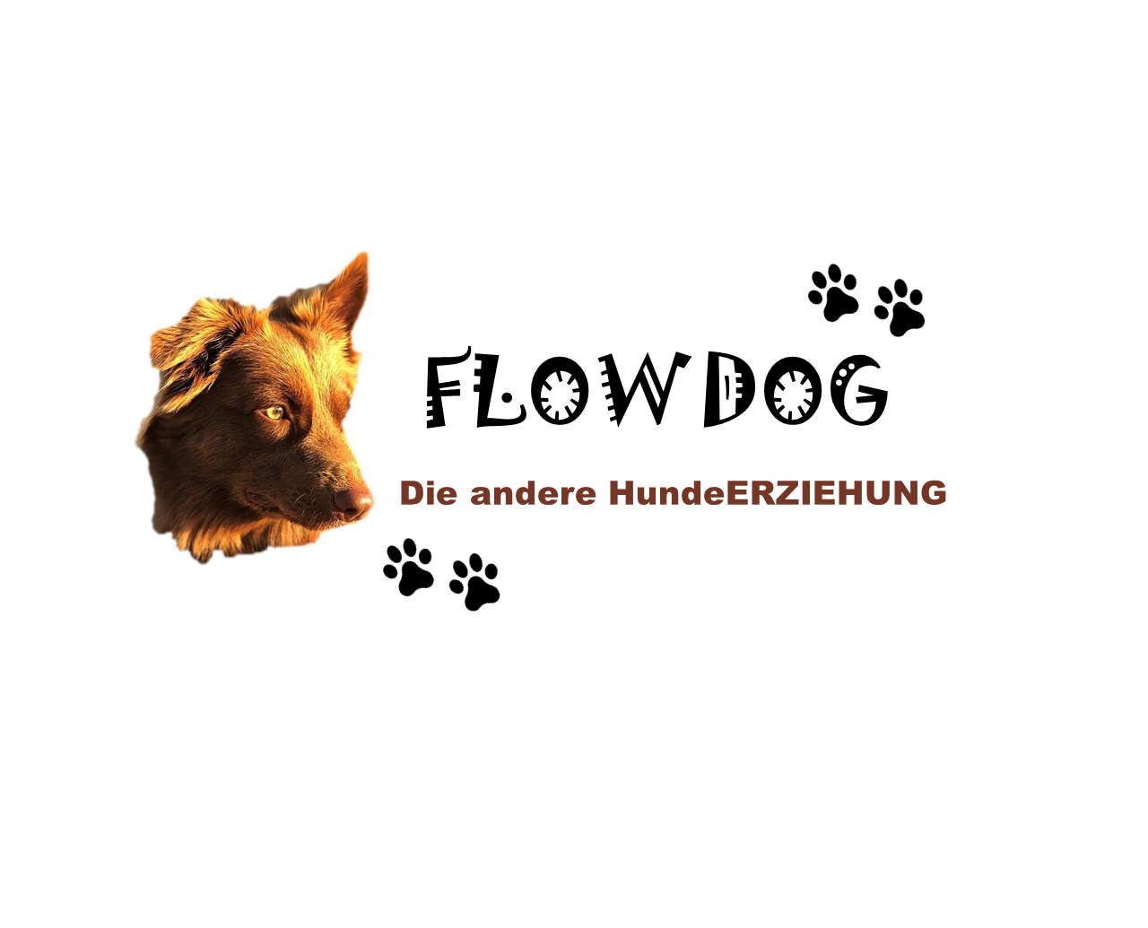 FlowDog_Logo