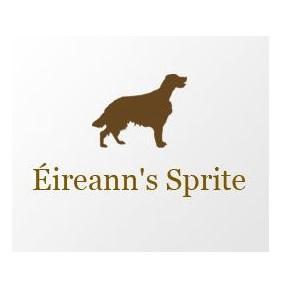EireannsSprite_Logo