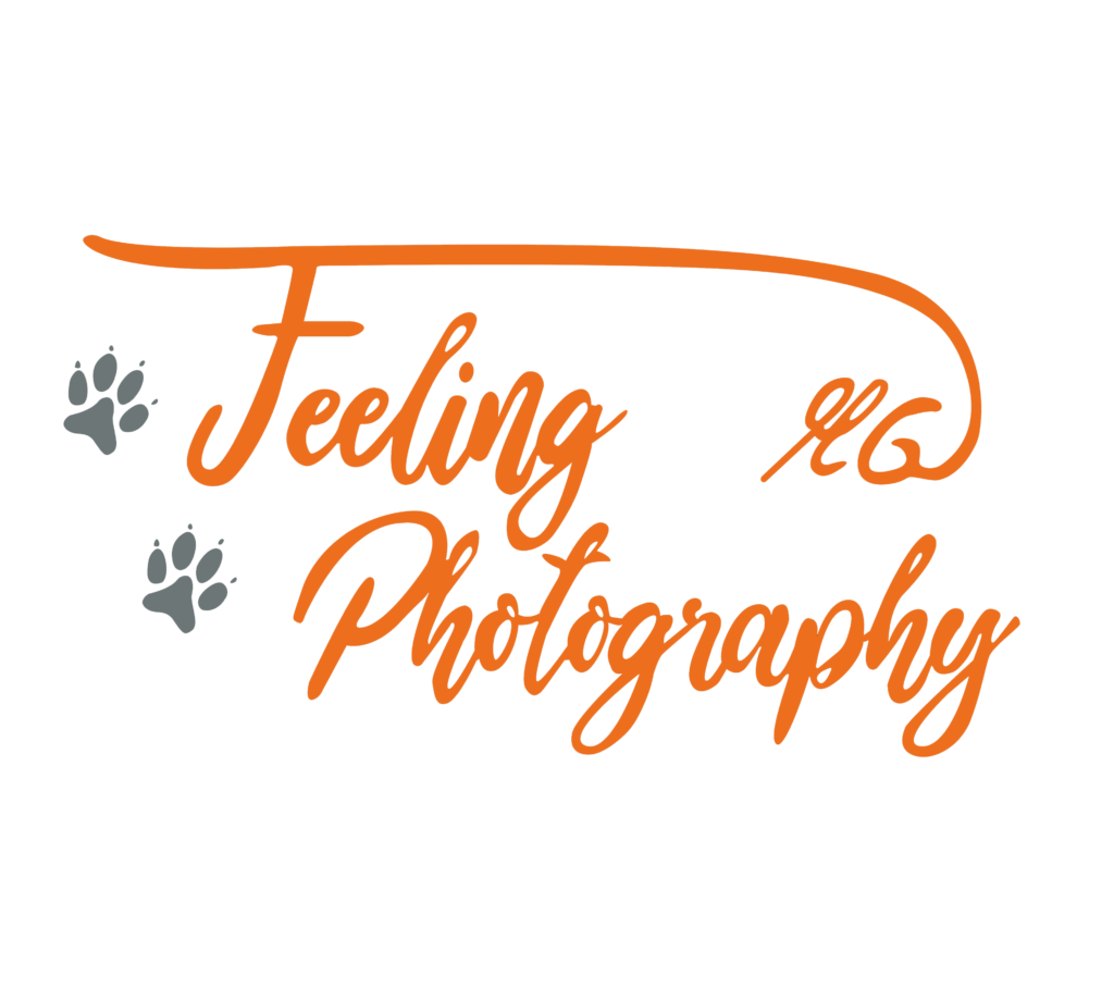 Feeling_Photography_Logo