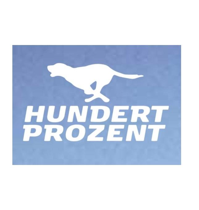 HundertProzent_Logo