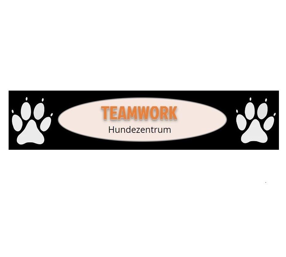 Teamwork-Temawork_Logo