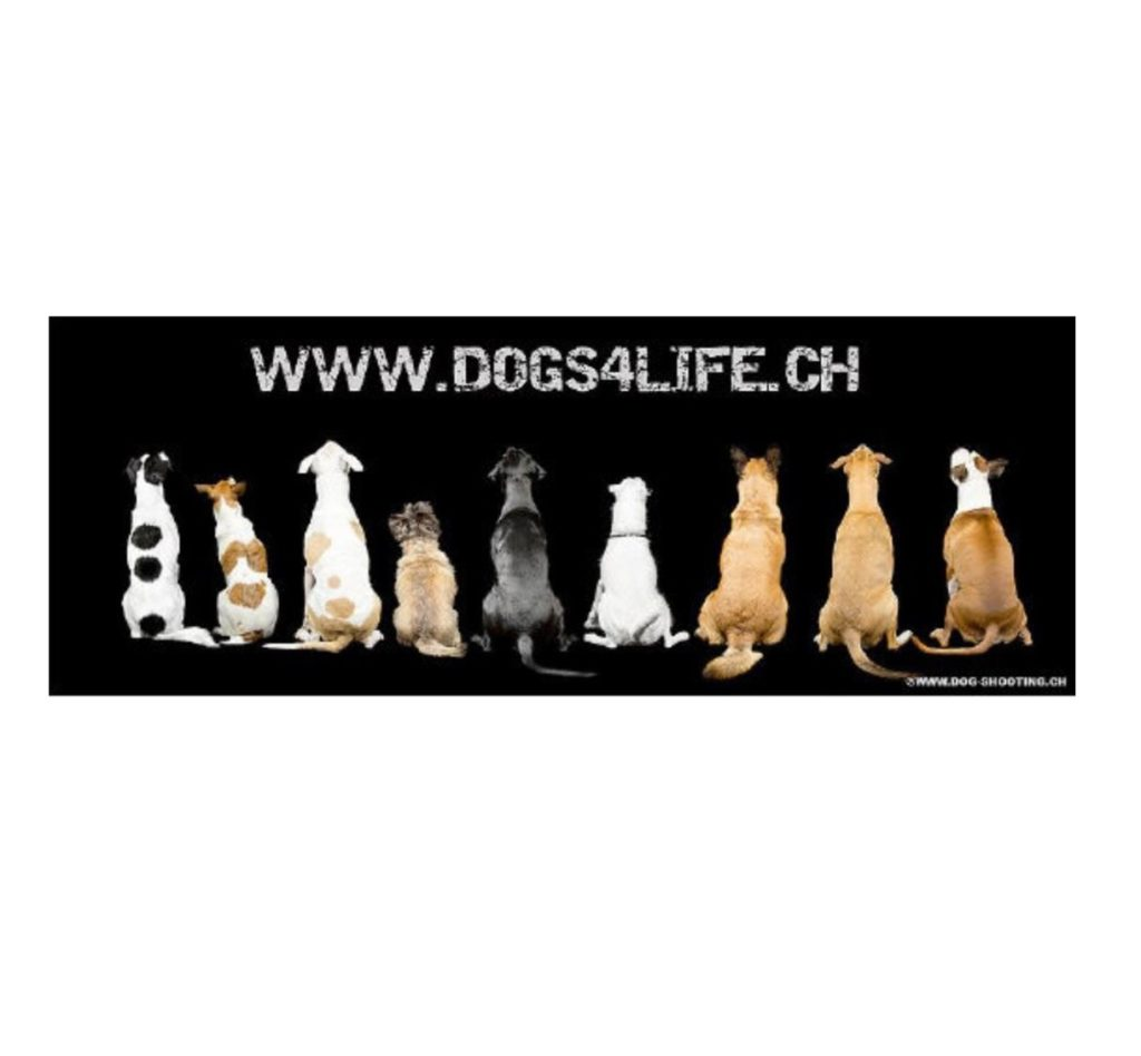 dogs4life_Logo