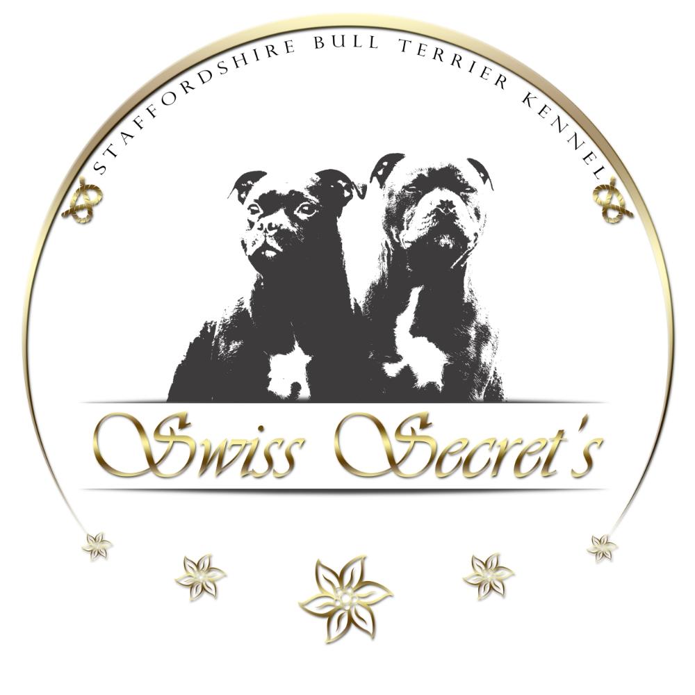 SwissSecrets_Logo