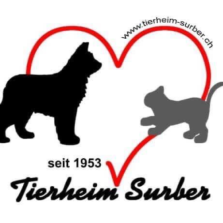 TierheimSurber_Logo