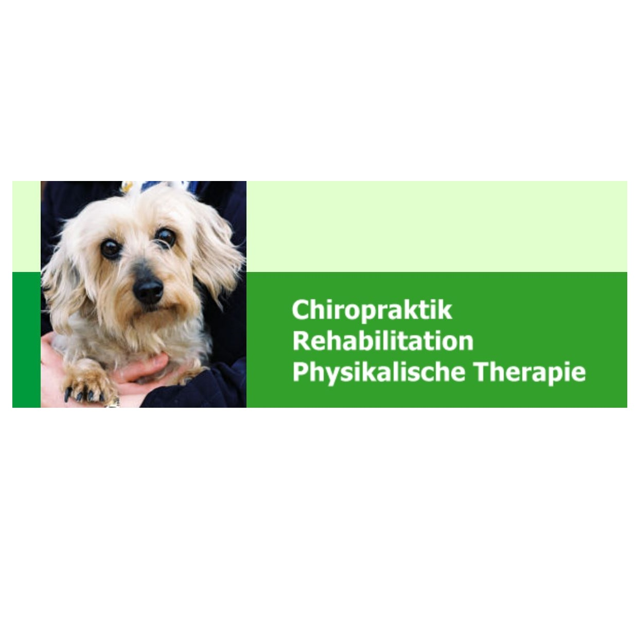 Chiropraxis_Logo