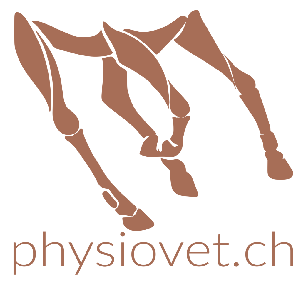 Physiovet_Logo