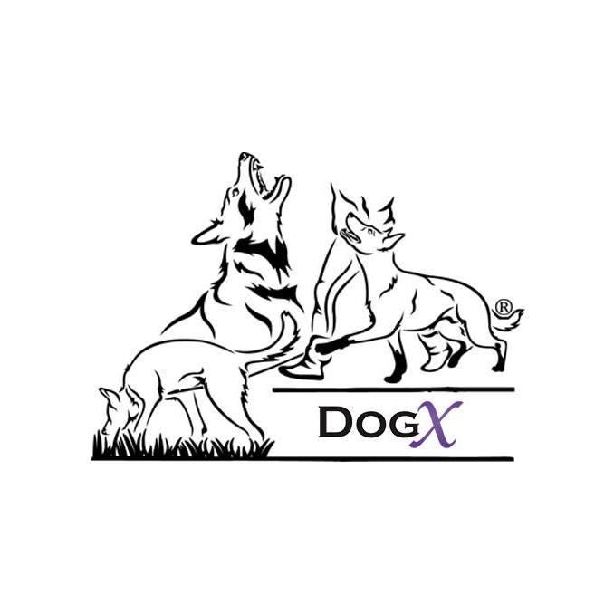 Logo Dogx