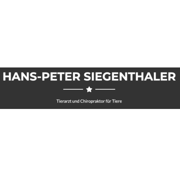 Logo HPS Chiropraktor