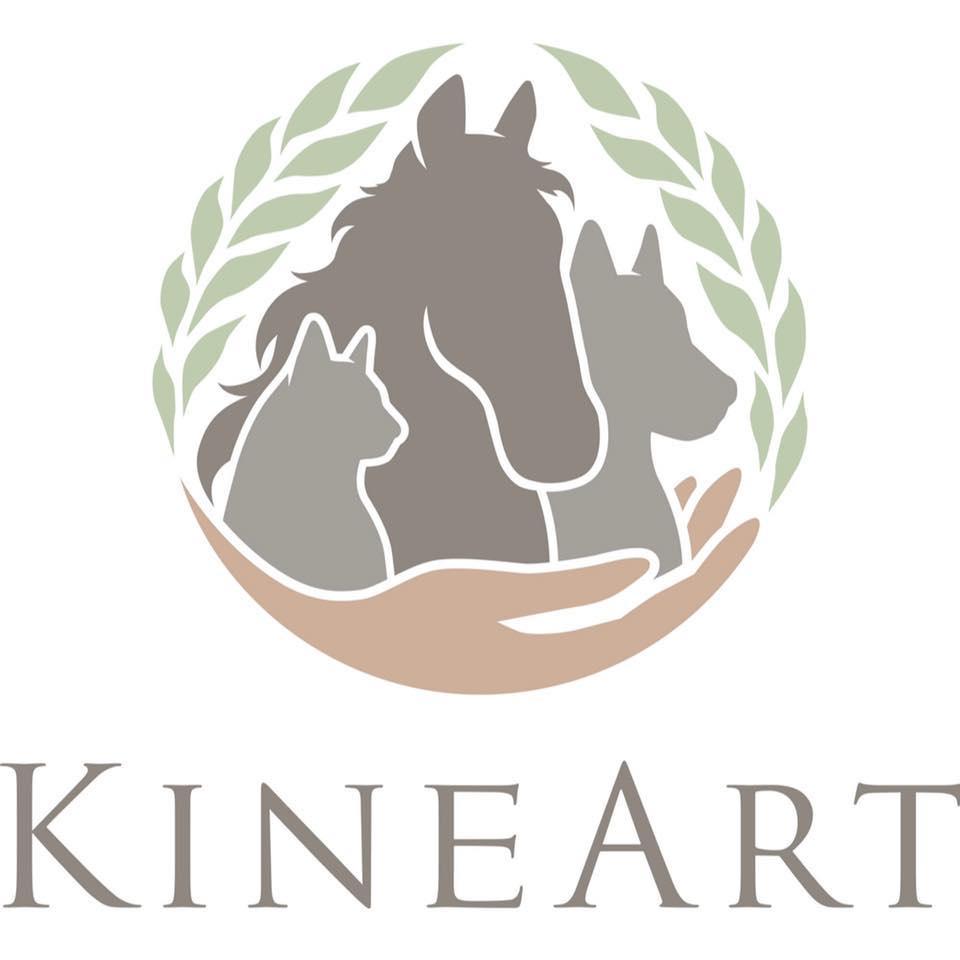 Logo Kineart