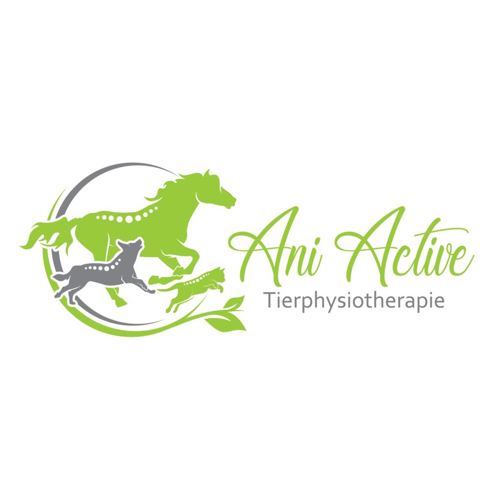 AniActive_Logo